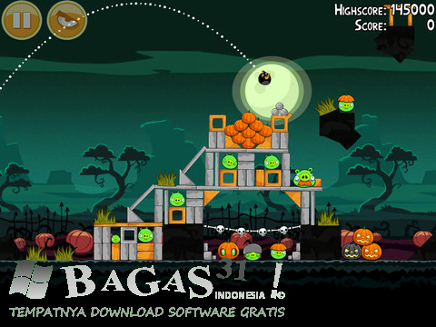Angry Birds Seasons 2.0.0 Full Crack 2