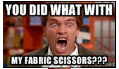 sewing%2Bmeme determined debby sewing memes?