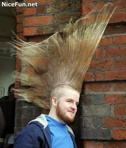Fotomontaje chistoso la peluquera aprendiz una estilista loca