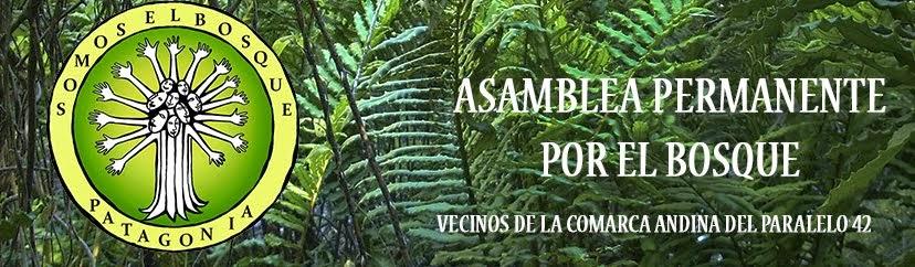ASAMBLEA PERMANENTE POR EL BOSQUE