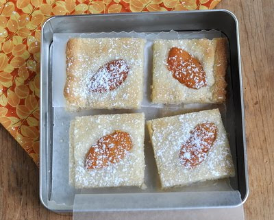 Fresh Apricot Bars