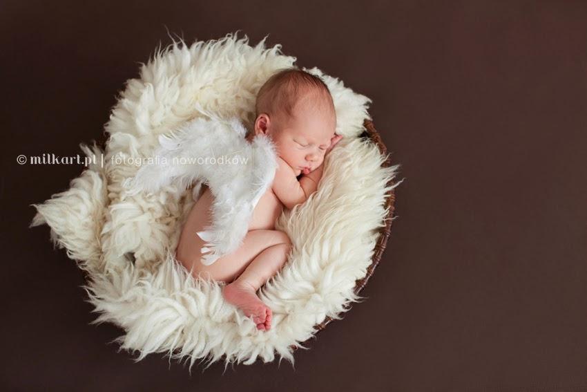 sesje zdjęciowe noworodków, fotograf dziecięcy, sesja zdjęciowa dziecka w poznaniu, profesjonalne studio fotograficzne w poznaniu