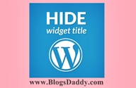 Hide Widget Title In WordPress