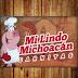 Carnitas Mi lindo Michoacan | Tel. 120-1603