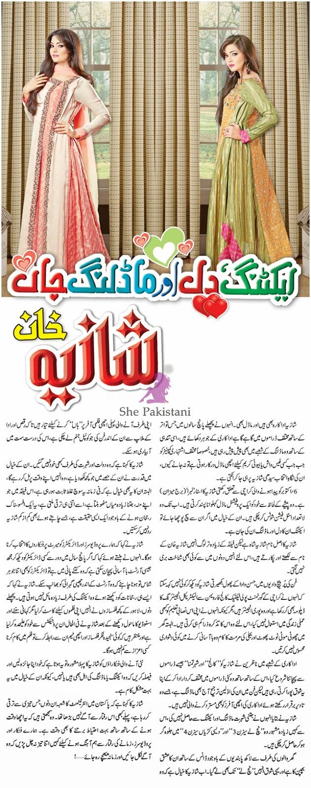 http://shepakistani.blogspot.com/