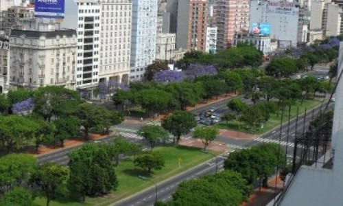 Metrobús: daño irreparable al patrimonio natural