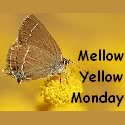 MellowYellowBadge