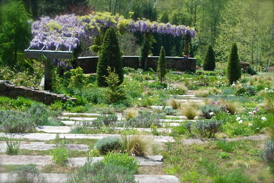 As you move to the left, you passed the circle lawn and soon find yourself at the top of the gravel staircase. The beautiful wisteria pergola curves around the lawn at the bottom. Once you descend the densely planted steps to this lawn, you will find a nice place to view the ponds further down the hill.