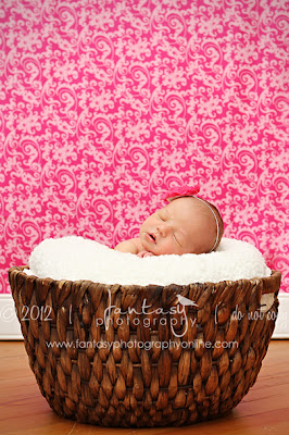 Triad Newborn Photographers - Fantasy Photography in Winston Salem