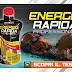 Test Integratore ENERGIA RAPIDA PROFESSIONAL
