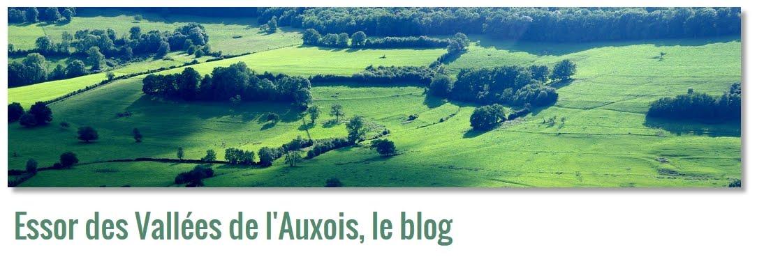 EVAuxois, le blog