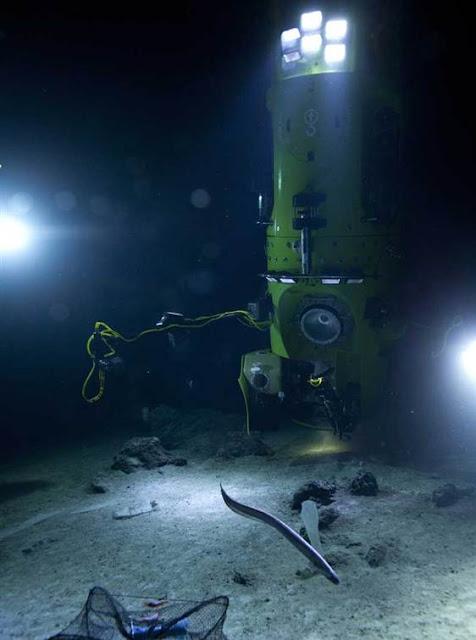 Next Big Future: Deep Sea Challenger Explores More Ocean ...