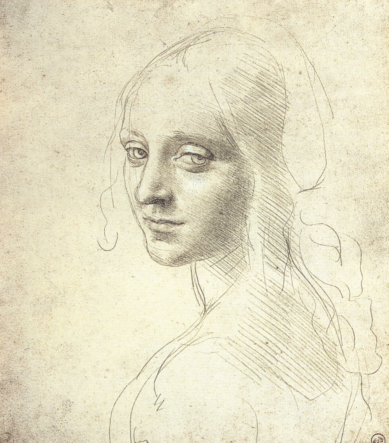 Marie Dauenheimer\'s Art and Anatomy Blog: Silverpoint Drawing ...