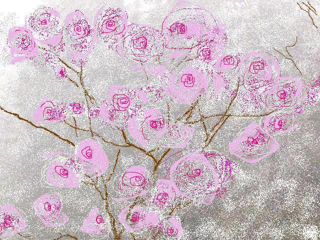 Il forum di teoderica febbraio 2013 for Fiori di ciliegio dipinti