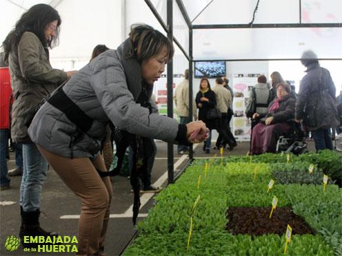 Semilleros en las Jornadas Gastronómicas de la Verdura de Calahorra 2013