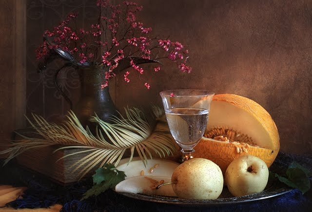 still life photography images