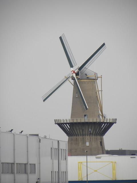 Harbour Rotterdam