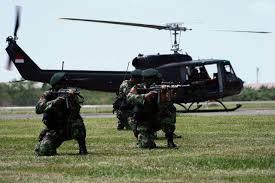 Organisasi dan Tugas Skadron-11/Serbu Puspenerbad