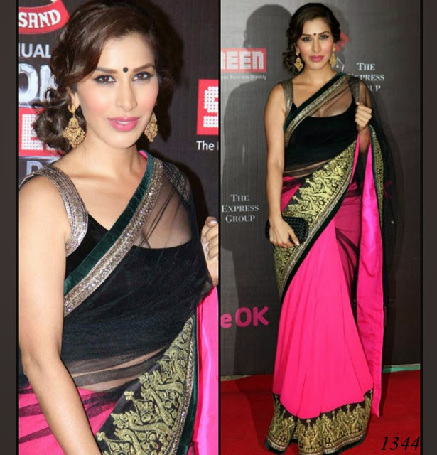 1344-Sophie Choudry in Manish Malhotra half and half saree...