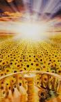 O Sol - Bidu Mendes