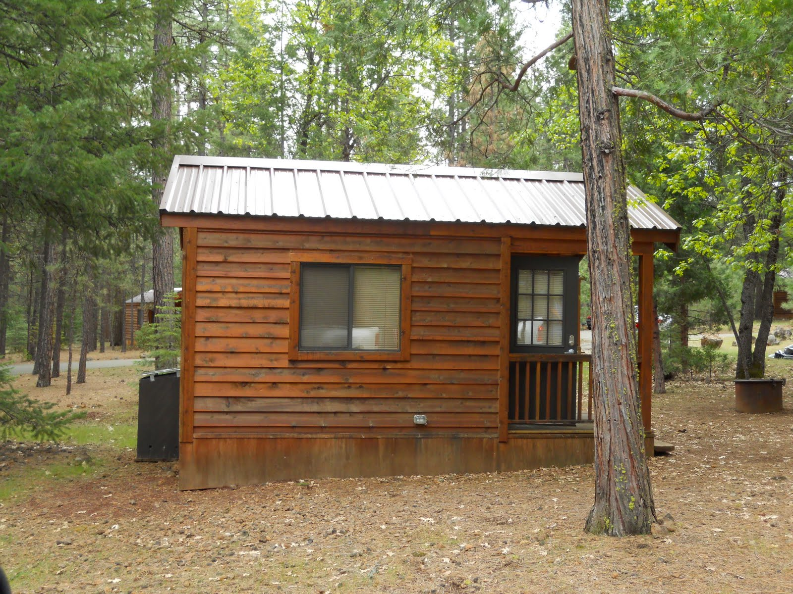 Sunshine nomads mccloud river california lower middle for Falls lake cabin rentals