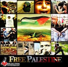 Save Palestin!