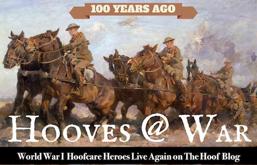 Hooves@War