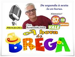 PROGRAMA A HORA DO BREGA