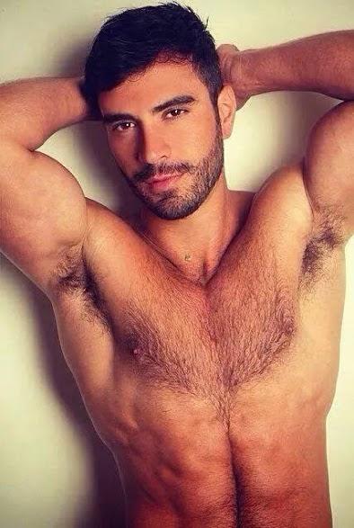 Hairy Man's Sexy Armpits