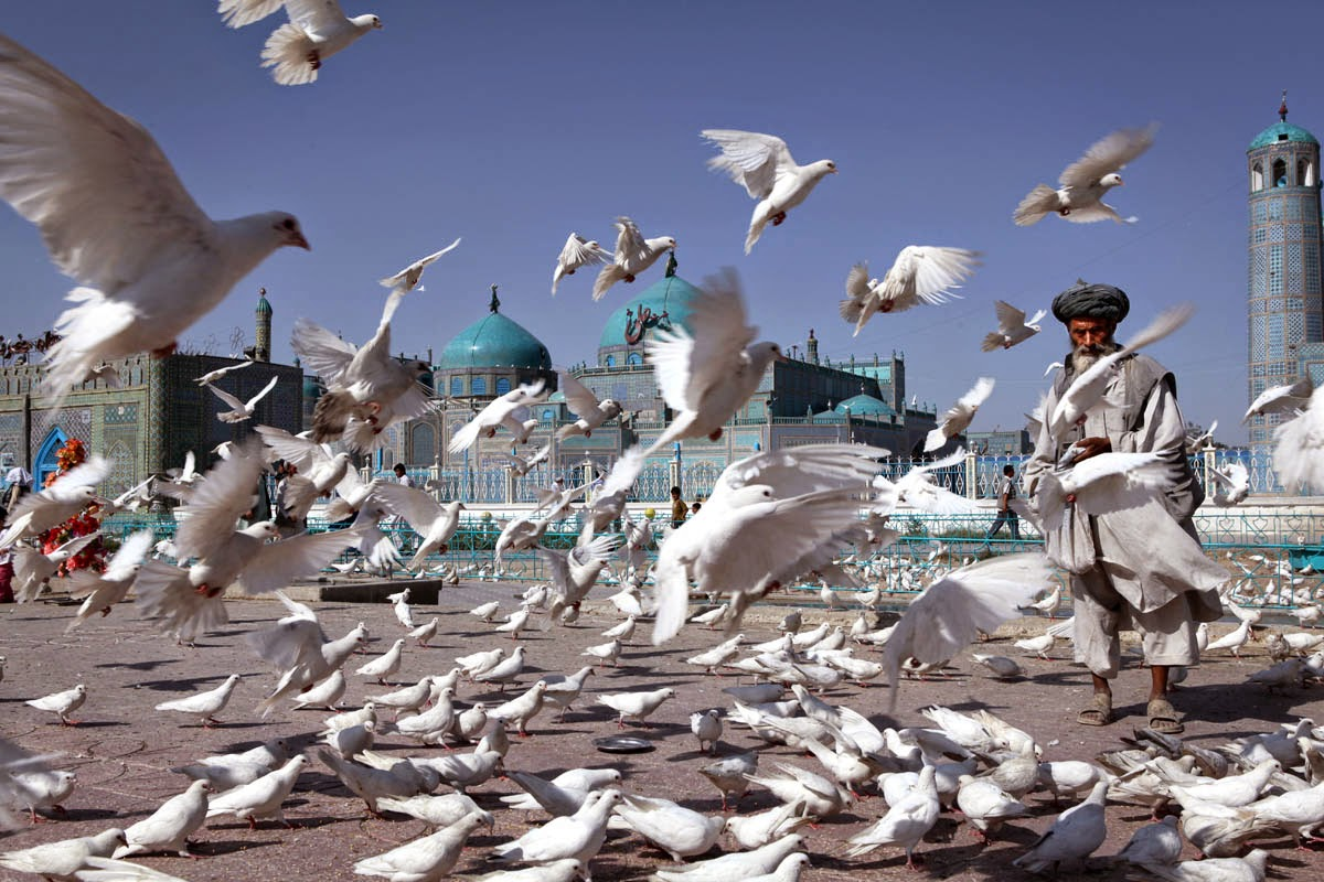 mazar e sharif senior singles 23, mazar-e sharif asian men in balkh, afghanistan looking for a: woman aged 18 to 99 hiya, i'm a 23 year old asian man living in mazar-e sharif, balkh, seeking a long term relationship with a great girl more.