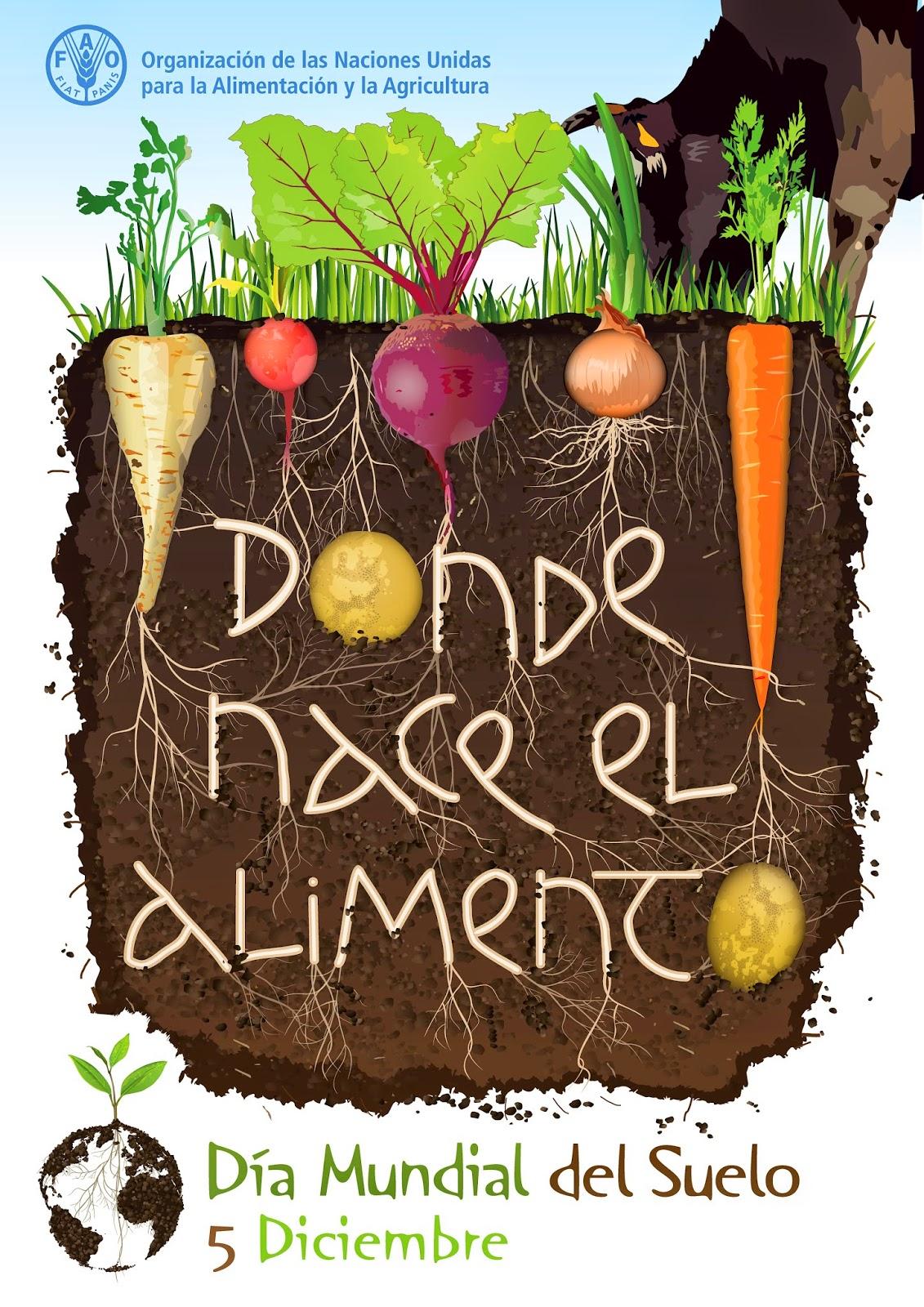 Poster oficial Día Mundial del Suelo. El cinco de diciembre se celebra el día mundial del suelo
