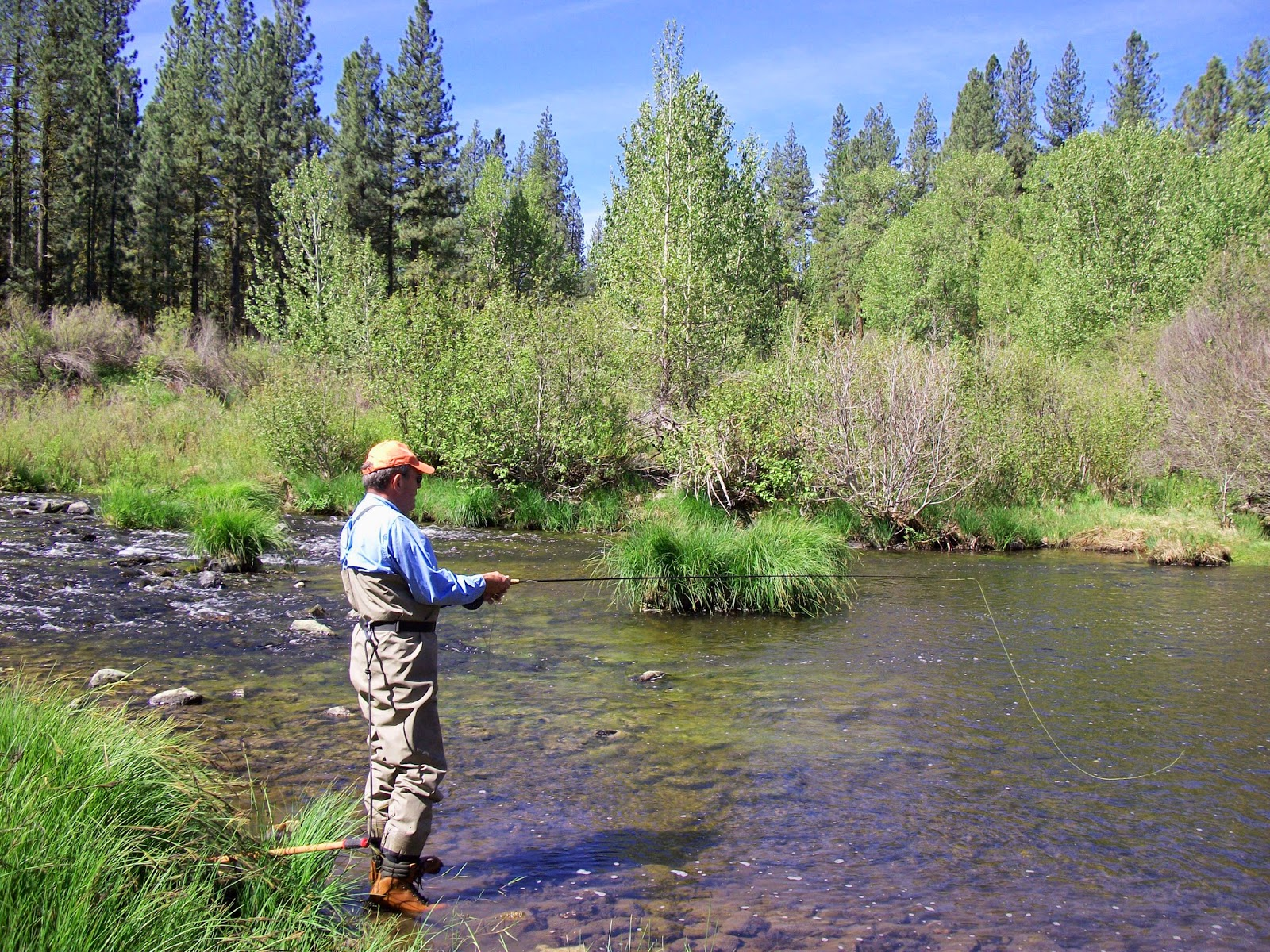 Jon baiocchi fly fishing news middle fork feather river for Feather river salmon fishing