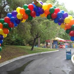 Balloon Decor Profile2