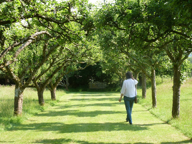 Apple walk