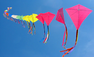 International Kite Festival2