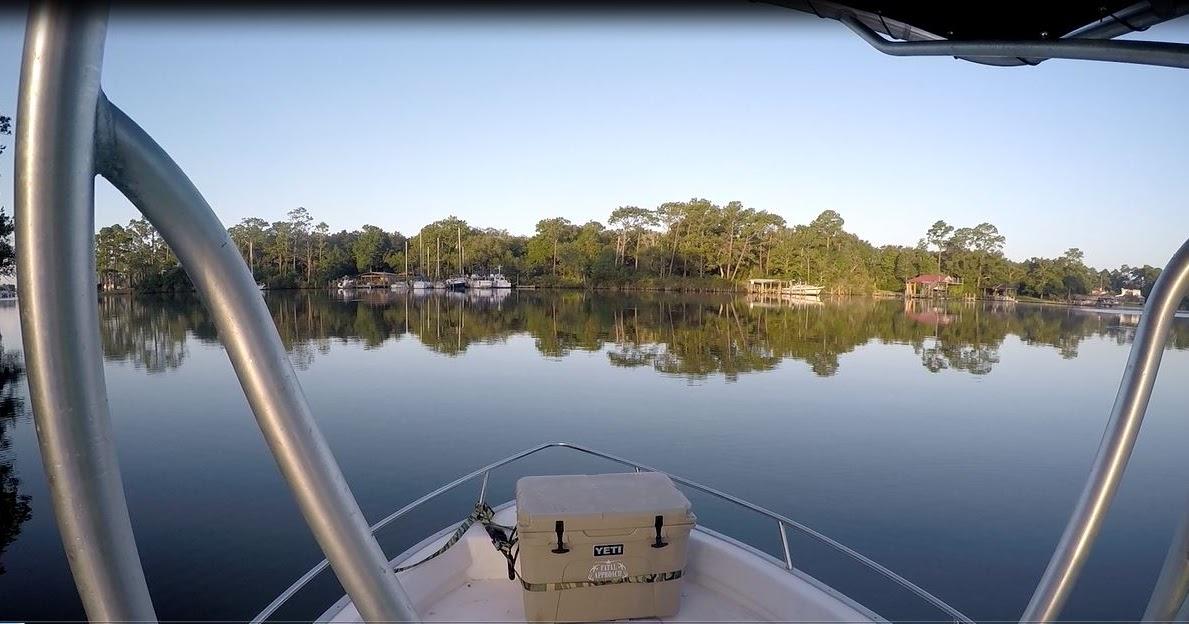 Small Boat Big Shrimp!