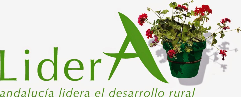 Lider Andalucía