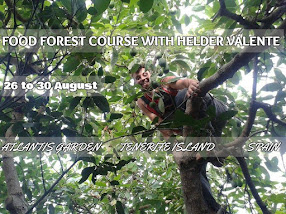 Food Forest Course