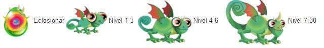 imagen del crecimiento del dragon camaleon