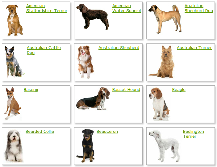 Species of dogs list
