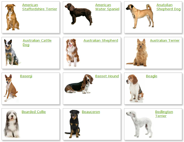 Virtual Dogs That You Can Breed