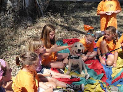 yellow Lab puppy Kirkland being petted by school children