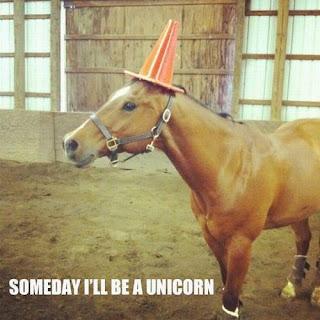 Pferd: Eines Tages werde ich ein Einhorn sein.