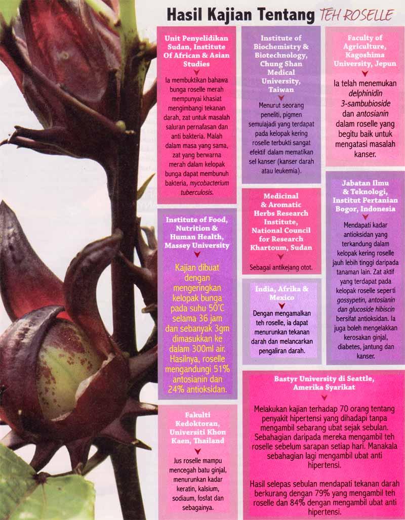 kajian khasiat roselle