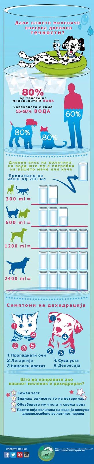 Дали вашиот миленик внесува доволно течности? постер презентација.