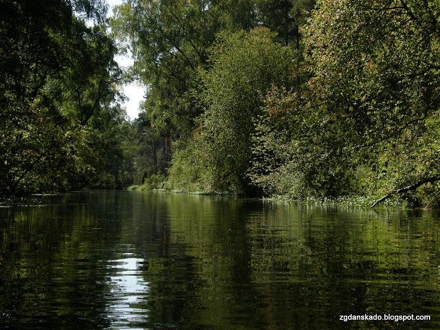 Wielki Kanał Brdy - Fojutowo