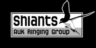 Shiants Auk Ringing Group