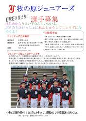 ☆選手募集中☆