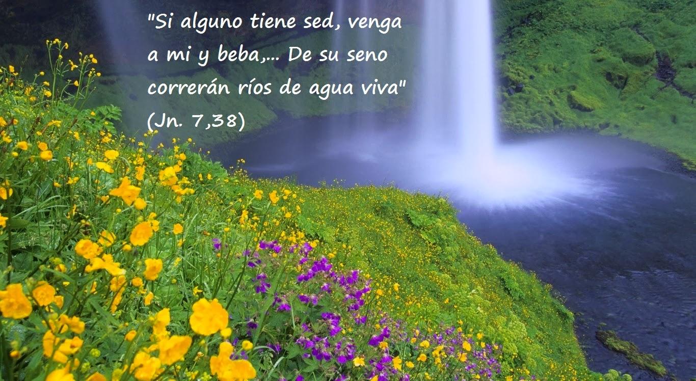 El Blog de Marcelo: 14 viñetas del Evangelio de Juan: Paisajes y ...