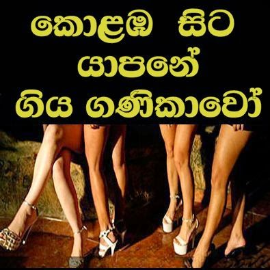http://www.gossiplanka-hotnews.com/2014/11/brothel-in-sri-lanka-to-jafna.html